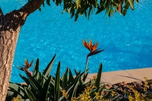 build your pool in winter and have happier tradies